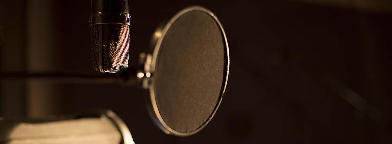 professional-mic